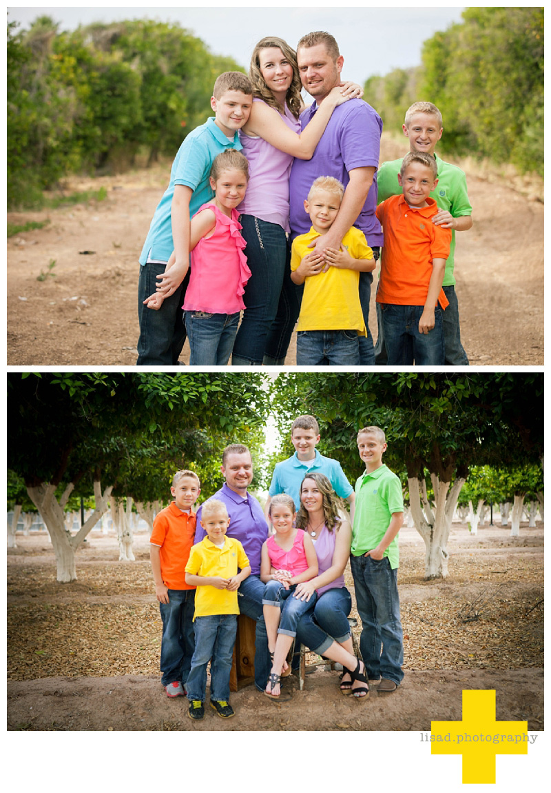 Family photography in the orange groves in Mesa| Mesa family photographer| Mesa Family photography | Phoenix Family Photographer | Scottsdale Family Photographer | Lisa d. Photography